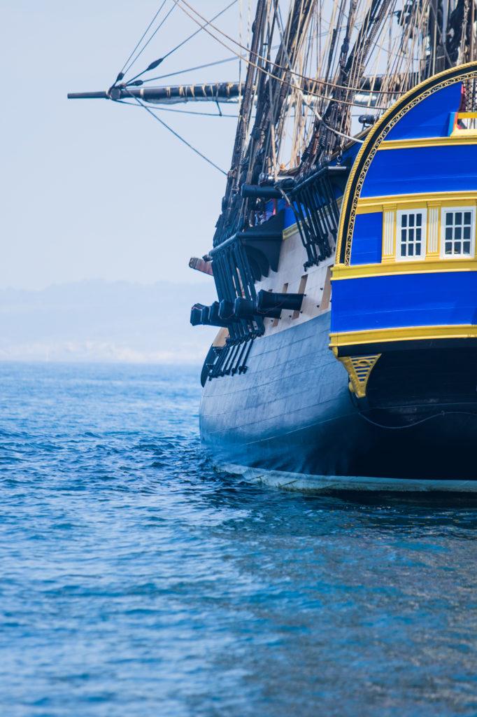 explore ocean-hermione-pays basque-activité saint jean de luz-loisir cote basque-catamaran-balade en bateau pays basque-whale watching-dauphin pays basque-activité hendaye