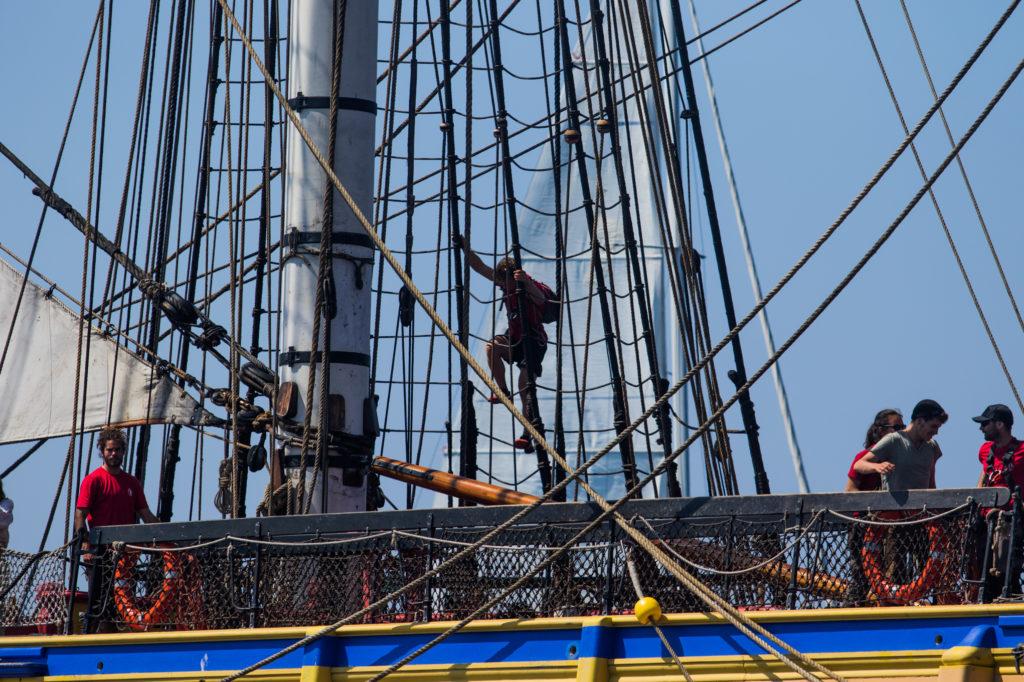 explore ocean-hermione-pays basque-activité saint jean de luz-loisir cote basque-catamaran-balade en bateau pays basque-whale watching-dauphin pays basque-biarritz