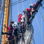 explore ocean-hermione-pays basque-activité saint jean de luz-loisir cote basque-catamaran-balade en bateau pays basque-whale watching-dauphin pays basque-hermione pasaia