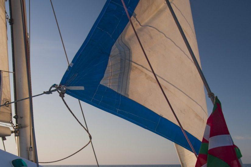 dauphin-pays-basque-explore-ocean-whale-watching-quoi-faire-a-saint-jean-de-luz-activité-biarritz-loisir-cote-basque-cote-basque-pays-basque-bayonne